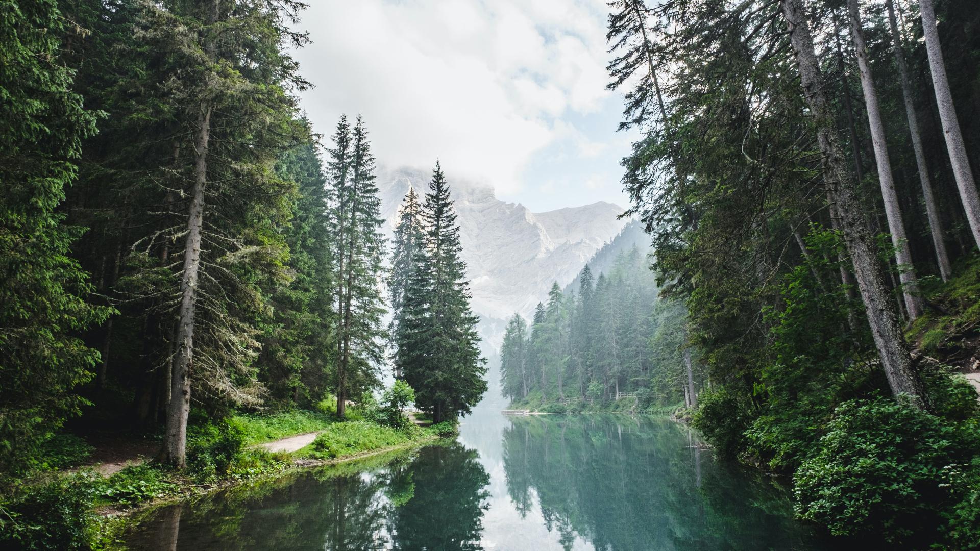 Looduse eest hoolt kandmine on Jumala idee